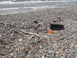 Marine litter on Walney beaches (c) MBP